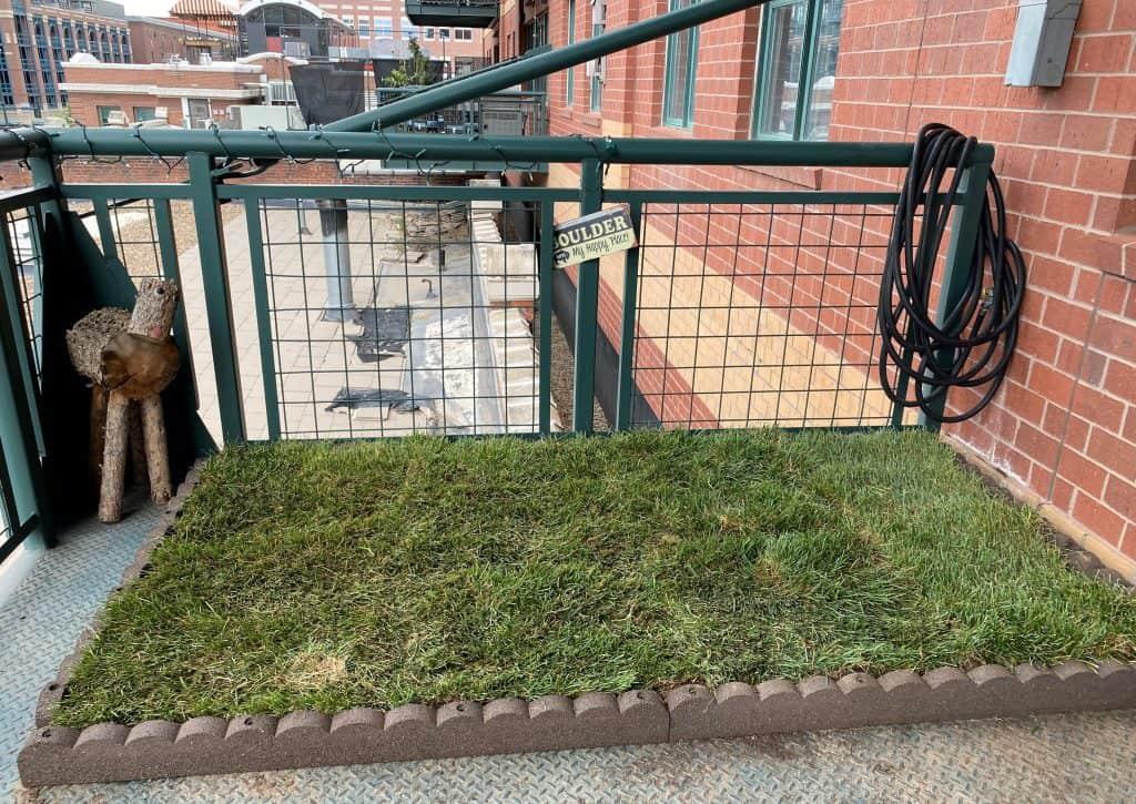 DIY balcony dog potty