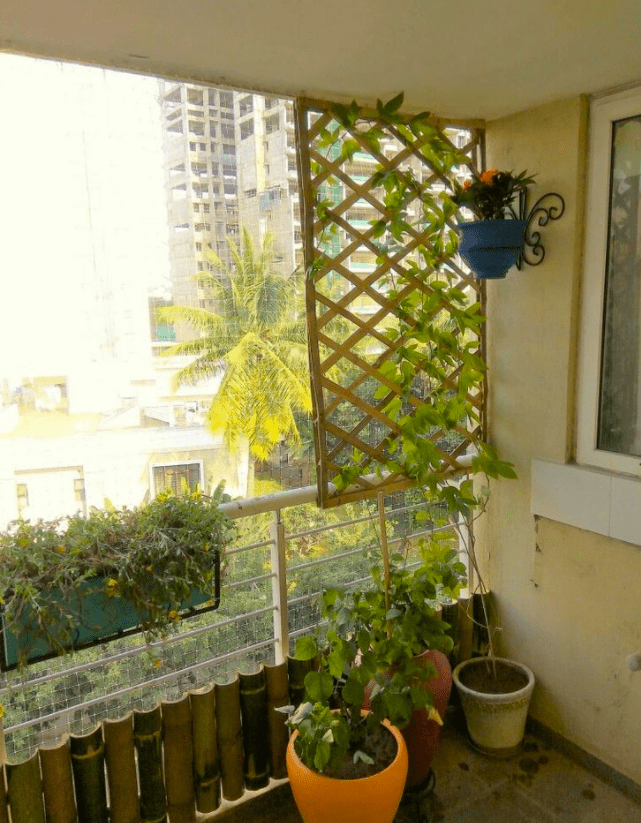 vertical bamboo fence on balcony
