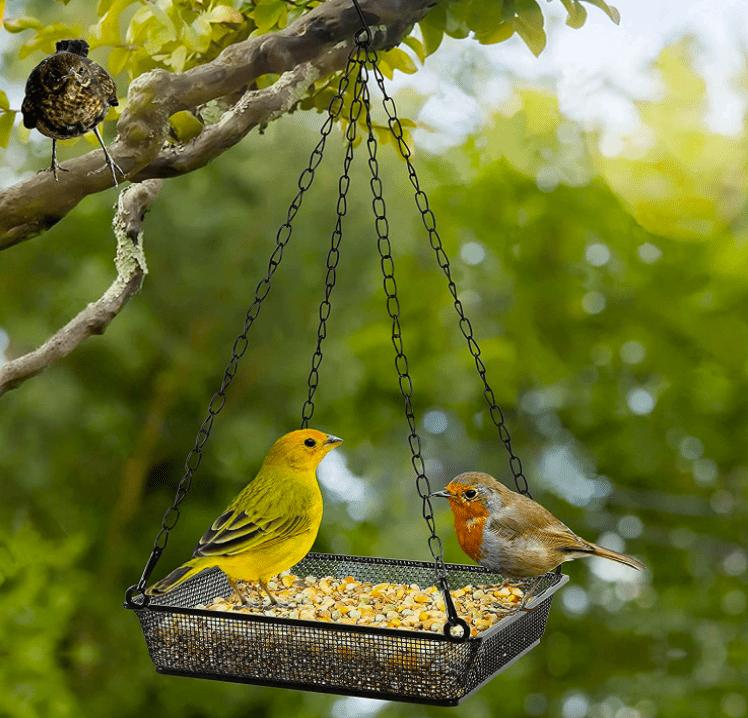 balcony bird feeder
